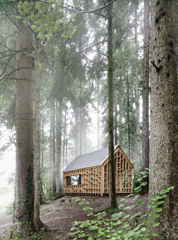 woodenhouseinthemiddleoftheforest-2
